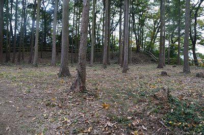 本丸は木がたくさん