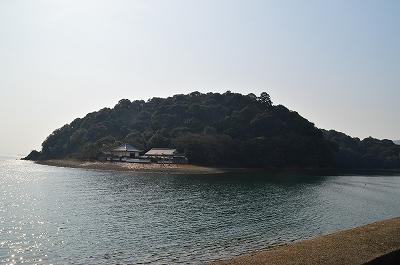 独自の樹木を抱く生島