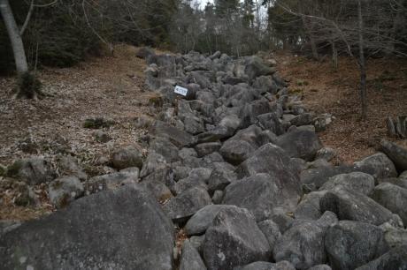 岩の滝やでぇ