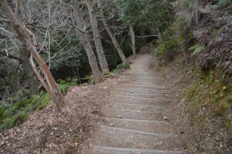 藤井寺への道その二