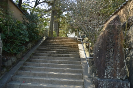 10第四十六霊場浄瑠璃寺
