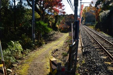 線路のそばはかなり狭い