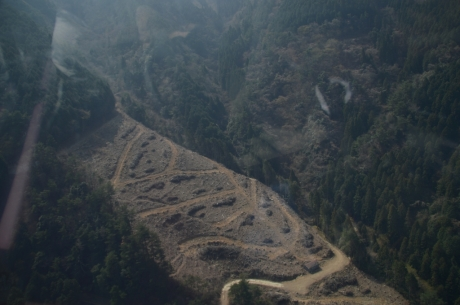 6雲辺寺の登山道