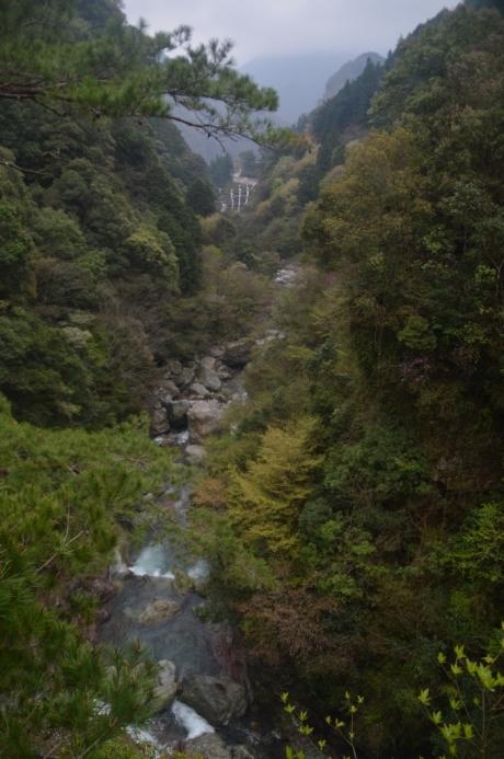 13展望台からの渓谷