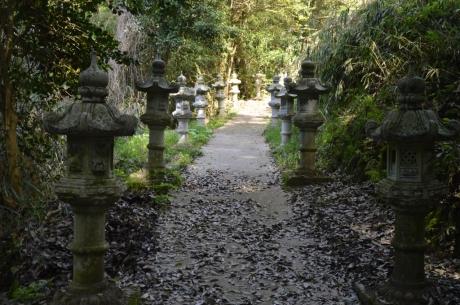 4灯籠が並ぶ道