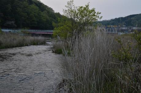 10ダムの麓の川