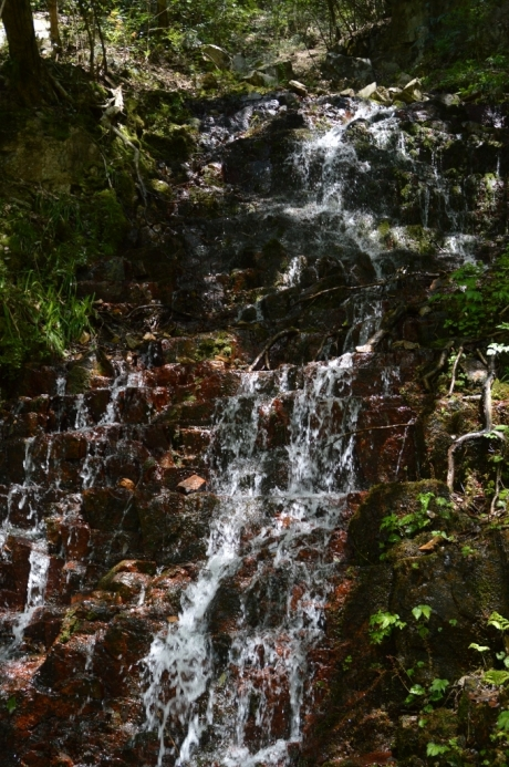 11遊歩道のすぐ脇を流れる滝