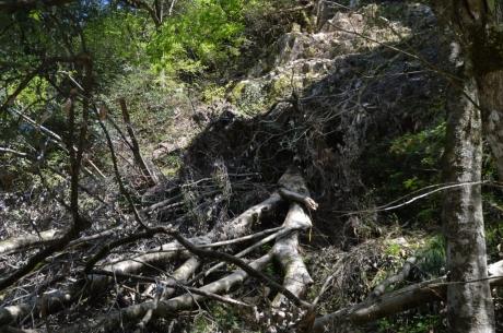 17土砂崩れの弊害