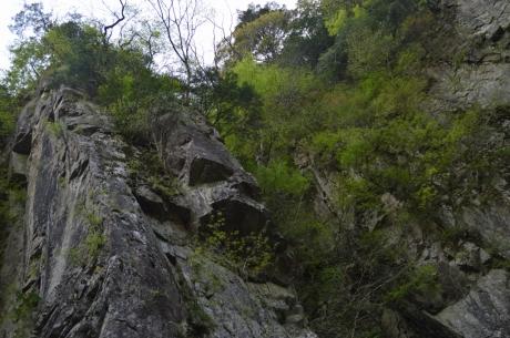 24見上げる岩岩