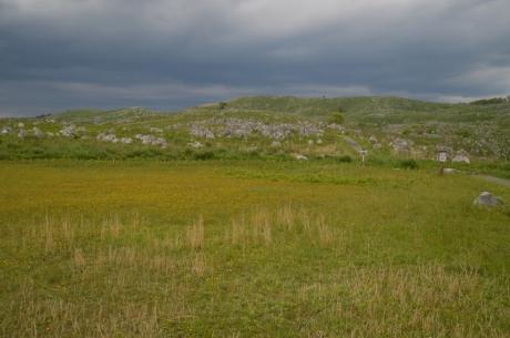 18花と岩と草原と