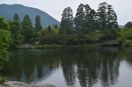 10金鱗湖