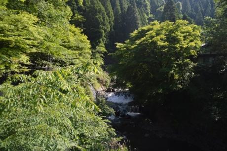 5川の源流