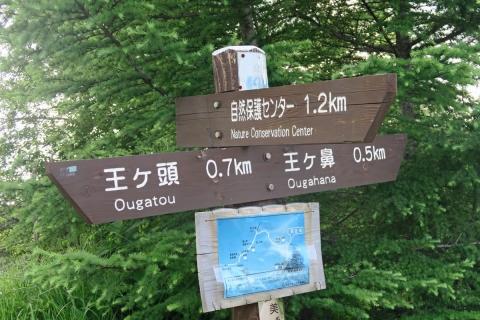 52a王ヶ鼻への道