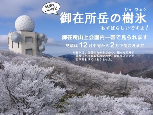 20150215_樹氷