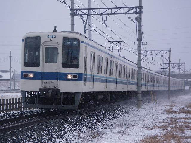 IMGP2938.jpg