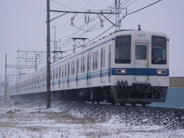 IMGP2939.jpg