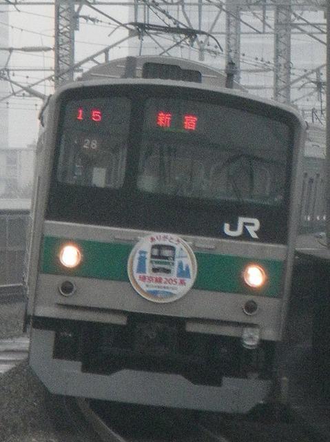 IMGP3206.jpg