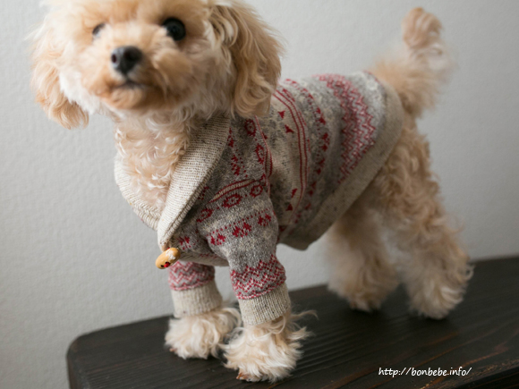犬服 セーター