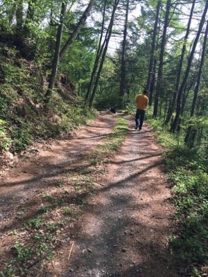 八ヶ岳散歩