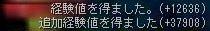 Maple141228_230007.jpg
