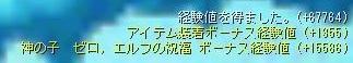 Maple141231_121520.jpg