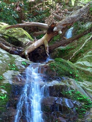 浄心の滝_その2
