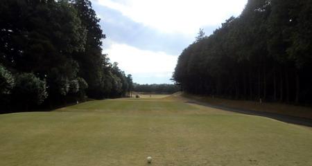 16成田の森