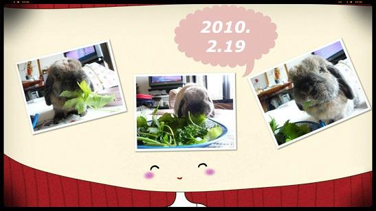 2010_1.jpg