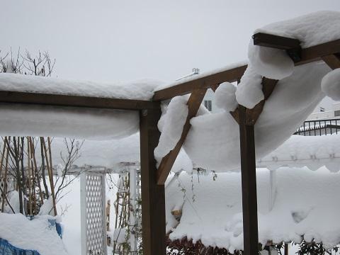 カーテン雪の