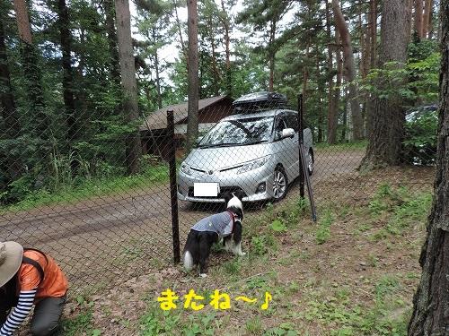 s-DSCN0946.jpg
