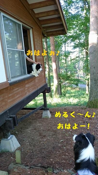s-_20150721_143836.jpg