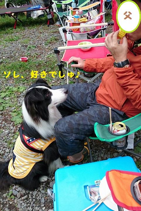 s-_20150722_165344.jpg
