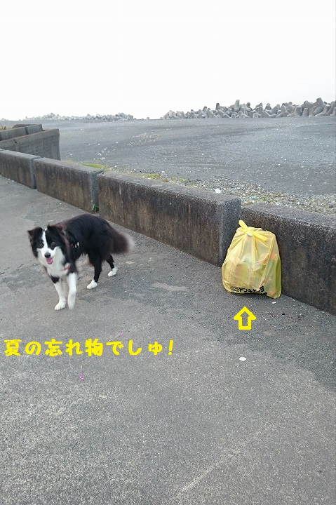 s-_20150730_105830.jpg