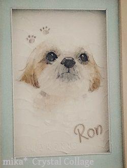 ペットの肖像画 ロンくん