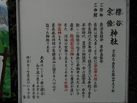 DSCN6024.jpg