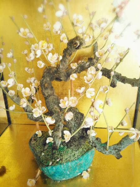 2015-02-25-09-37-25_deco梅の花