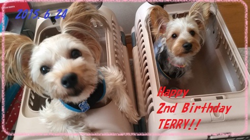 20150624Terry 2nd birthday-1