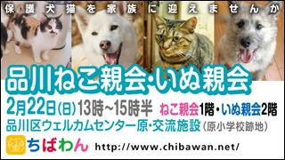 shinagawa52_320x180.jpg