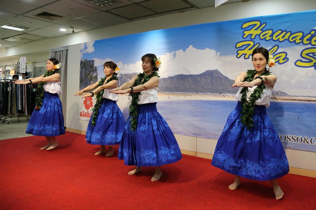 hawaiian 23