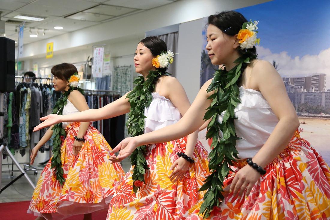 hawaiian 38