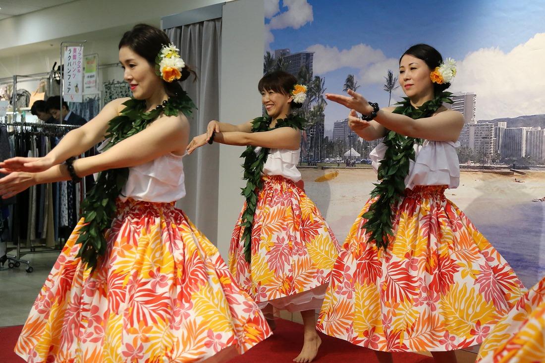 hawaiian 42