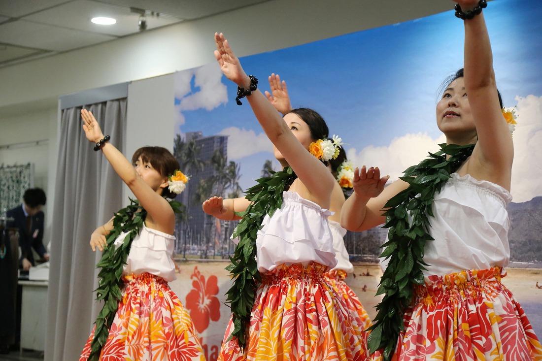 hawaiian 44