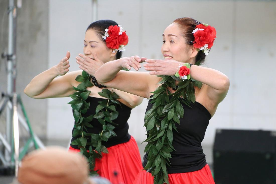 hula 22