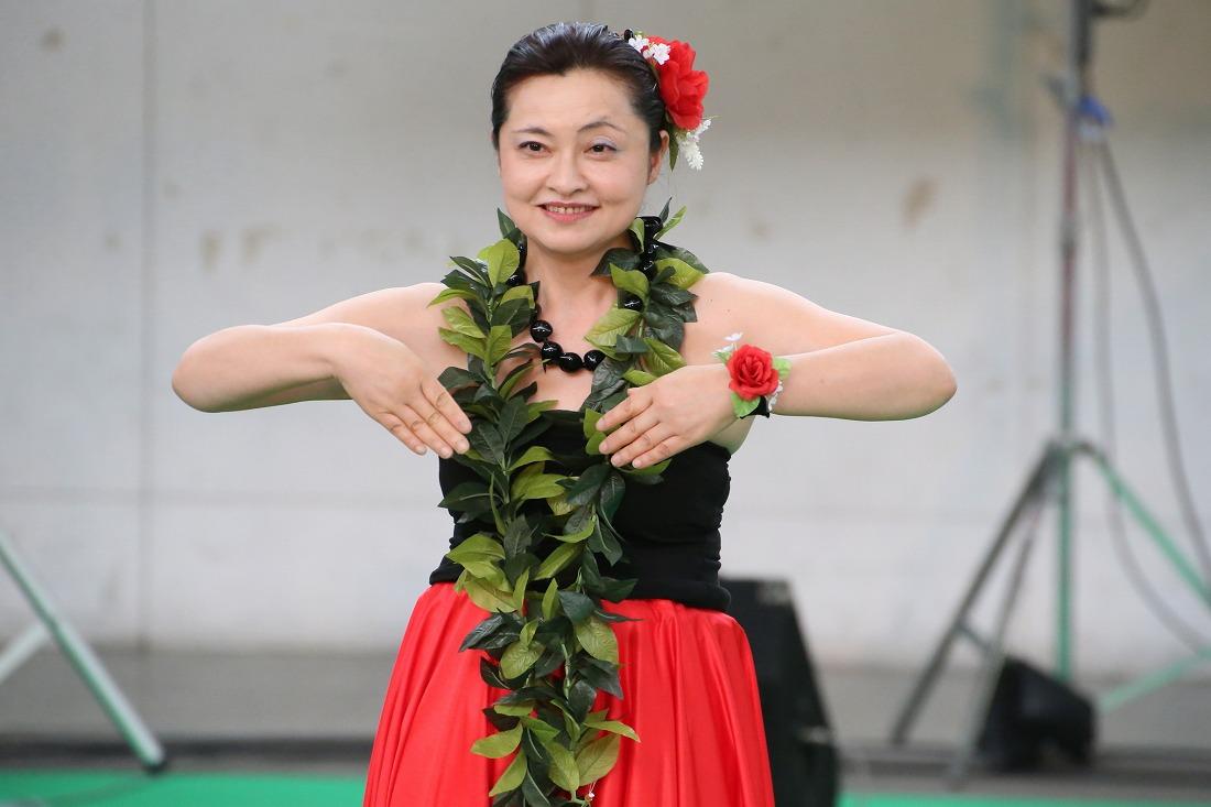 hula 26