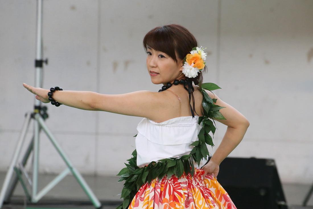 hula 43