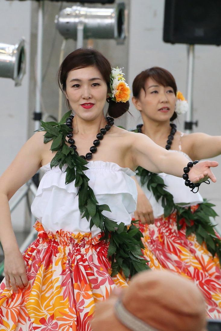 hula 50