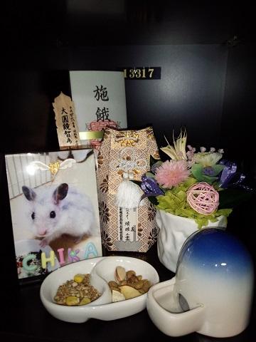 チカちゃん霊座20150316