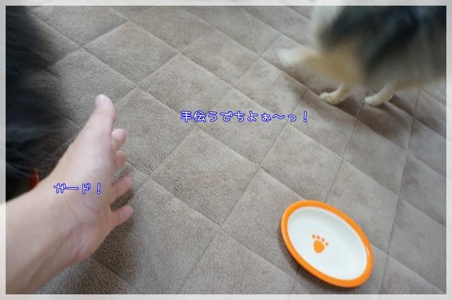 ごほうびタイム7 15-02