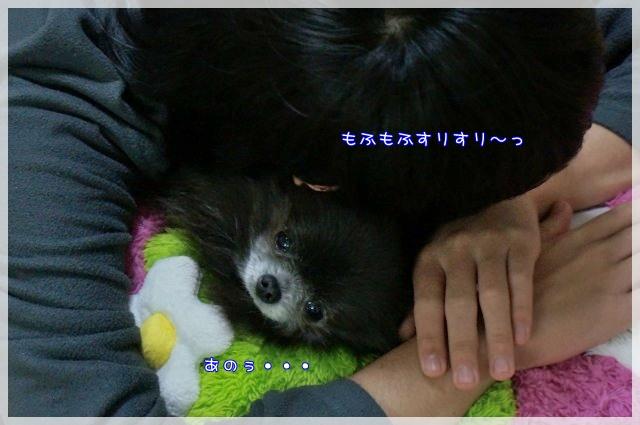 のんびりさん5 15-03
