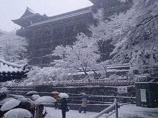 清水の大雪